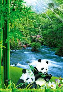 日本 熊猫/熊猫竹子熊猫图...