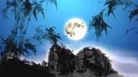 竹月升起视频(附AE)
