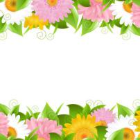 花边 矢量图/矢量图/精致鲜花花边矢量图