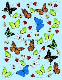 公鸡 昆虫/昆虫