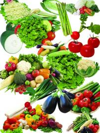 生日快乐 艺术字/蔬菜图片