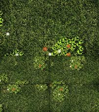 背景 过程/小草成长过程高清LED大屏幕背景视频素材
