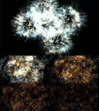 动态 背景 视频素材/烟花粒子动态特效背景视频素材已下载0 次