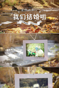 ae温馨精美婚礼片头模板模板下载