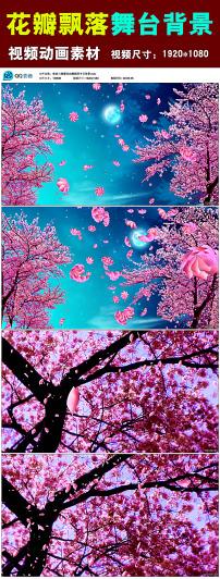 唯美樱花花瓣飘落舞台背景视频素材