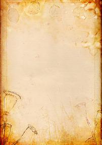 粉红植物花纹信纸背景图片