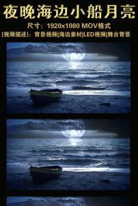 夜晚海边小船月亮视频