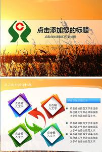 ppt 农村信用合作社/农村信用合作社年终总结汇报PPT... 已下载1 次