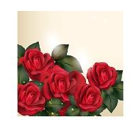 玫瑰花 手绘 矢量/复古手绘火红玫瑰花叶子矢量印花图... 已下载0 次