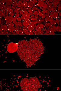 玫瑰花瓣组成心形再散落爱心led视频图片