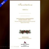 圣诞雪花答谢晚宴邀请函模板下载(图片编号:1