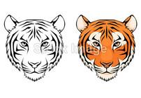 老虎头线条插图图片