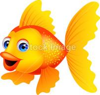小金鱼简笔画《小金鱼《小金鱼