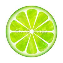 柠檬片画_柠檬片工笔画海报_图片114