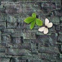 背景/石头墙壁背景树叶蝴蝶psd素材